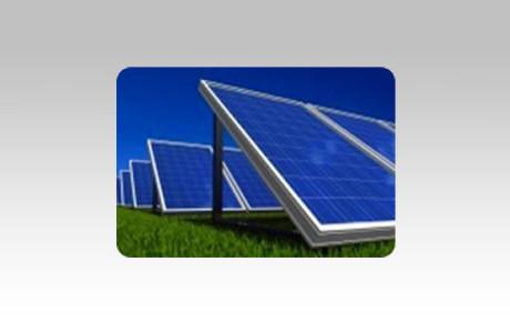 solar-panels-cat